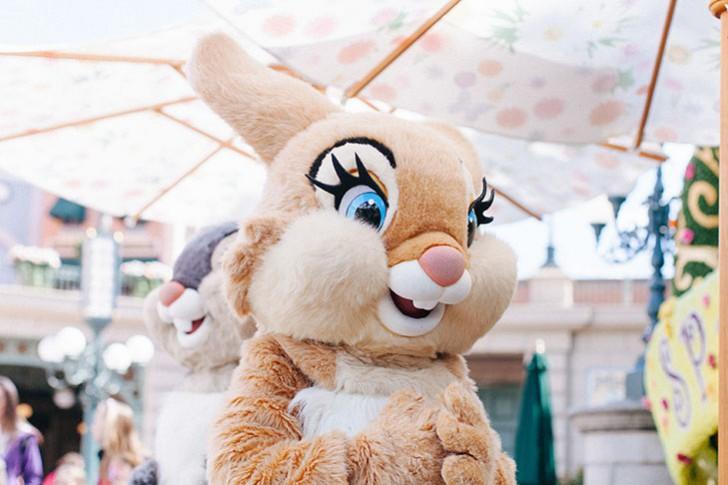 Disneyland paris 2015-25