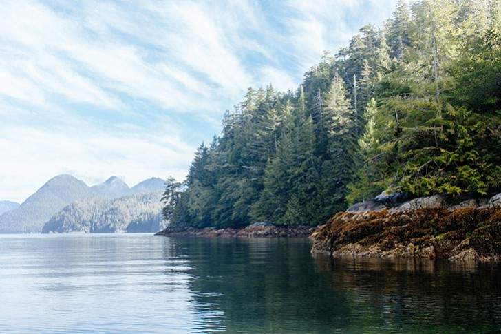 Hot spring cove-15