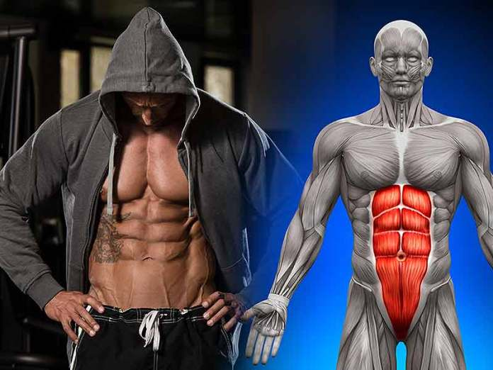 How To Get Six Pack Abs Without Pain Lifealth