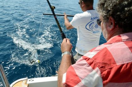 Aude coast: deep-sea fishing, sport and adrenaline-pumping booties in Narbonne-Plage
