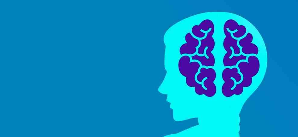 foto cervello