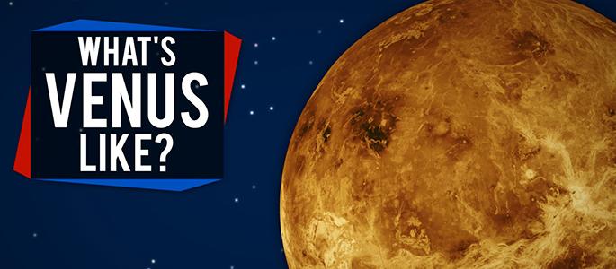What S Venus Like Come Chiedere Una Descrizione In Inglese Liveunict