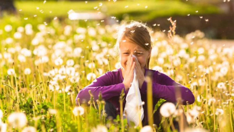 Risultati immagini per allergia primavera