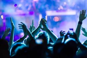 folla di persone a un concerto