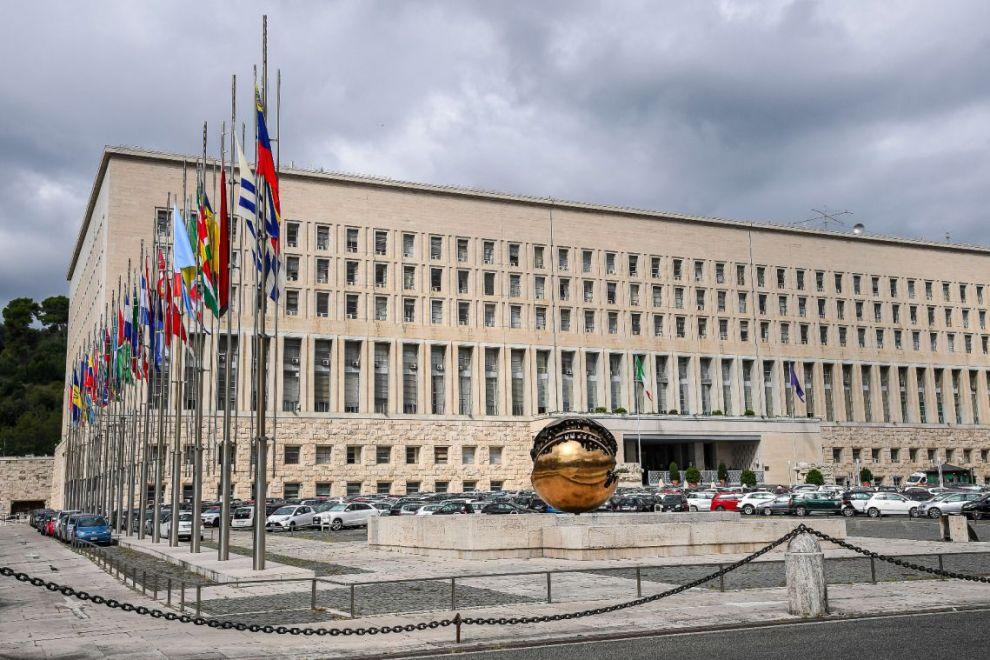 tirocini ministero affari esteri