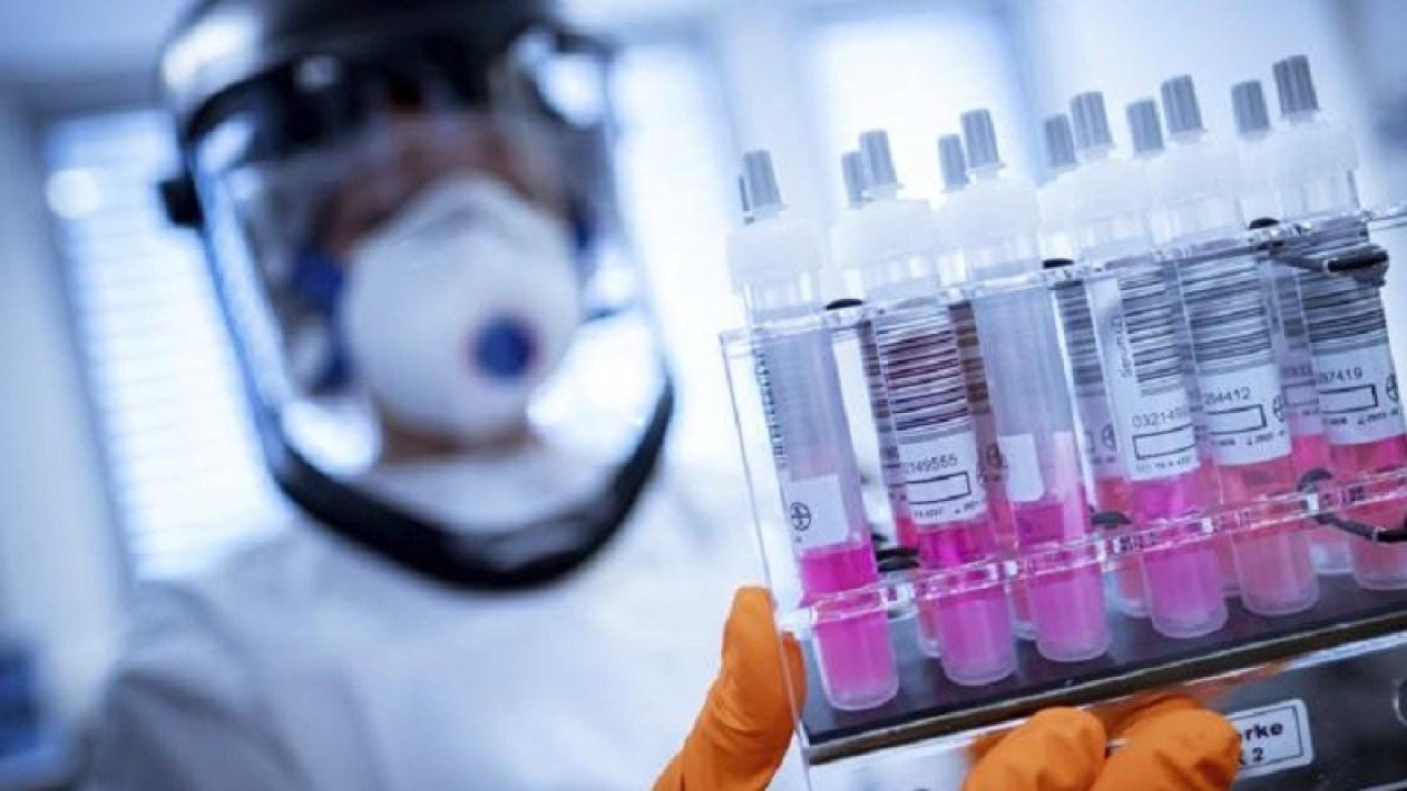 Coronavirus Test Rapidi In Sicilia C E L Ok Del Comitato Scientifico Liveunict