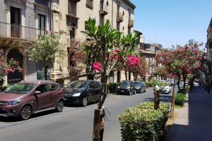 Catania via Sangiuliano