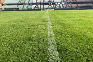 Stadio Angelo Massimino Calcio Catania