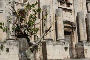 Piazza Dante di Catania
