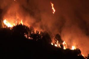 incendi sicilia stato emergenza