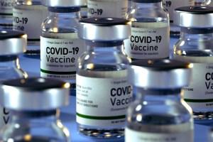 vaccini sicilia analisi gimbe