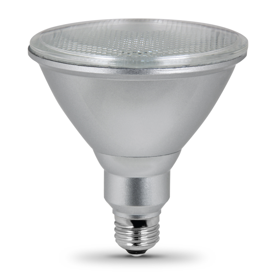 Flood Light Bulbs