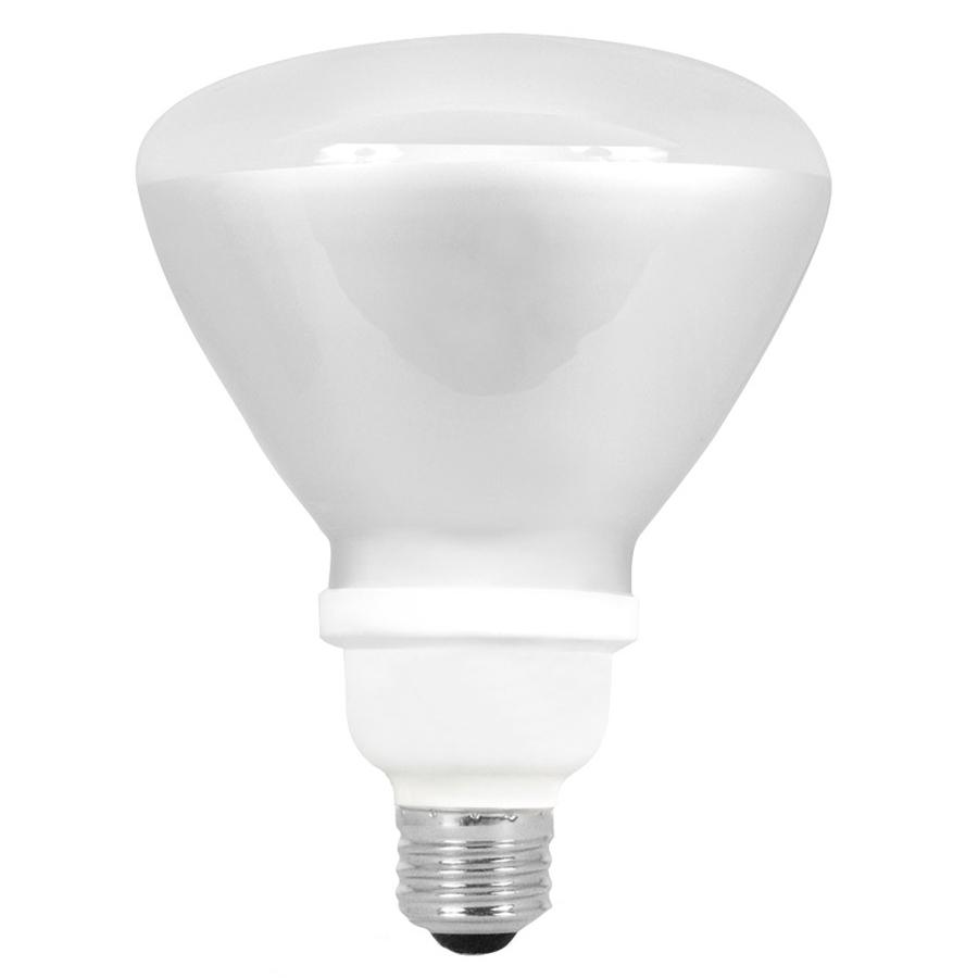 Brightest Indoor Light Bulbs