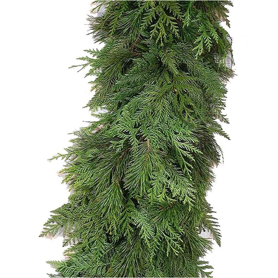 Shop 15 Ft Fresh Cut Cedar Christmas Garland At