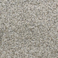 STAINMASTER Active Family Exuberance Notably Textured Indoor Carpet
