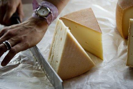 Elles auraient pu faire mille métiers. Elles ont toutes choisi le fromage. Par... (Photo Marco Campanozzi, La Presse)