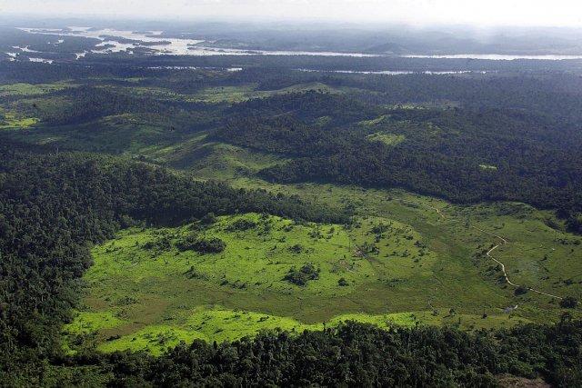 Vue aérienne sur la forêt amazonienne... (Photo AFP)