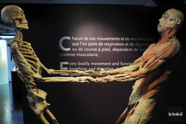 L'exposition Bodies était de passage à Québec en... (Photothèque Le Soleil, Erick Labbé)