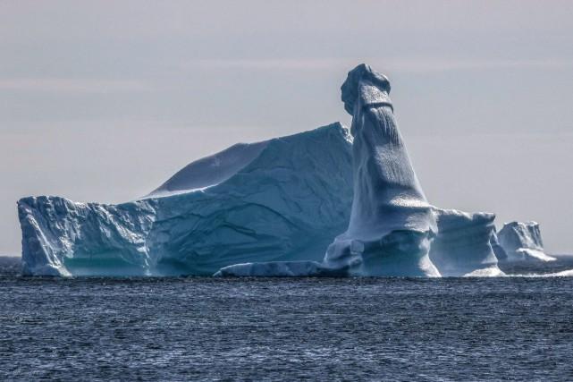 """Résultat de recherche d'images pour """"Un iceberg ressemblant à un pénis aperçu au large de Terre-Neuve"""""""
