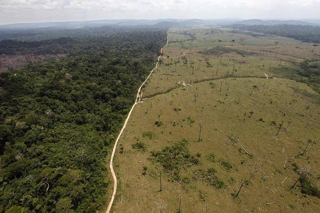 Les sols du monde sont de plus en... (Andre Penner, archives AP)