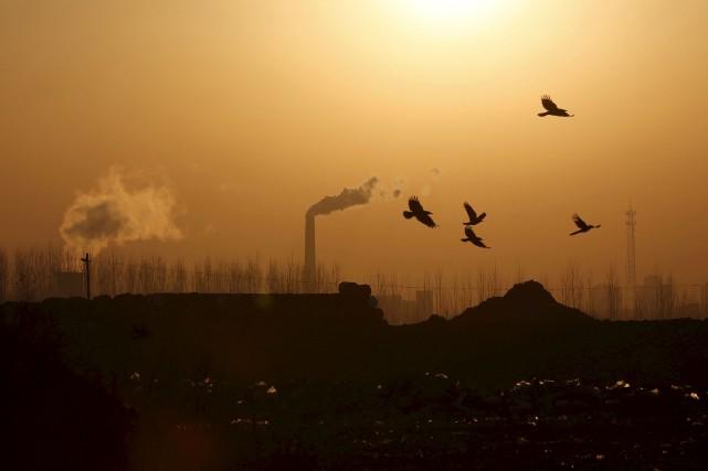 Non seulement les humains doivent cesser de rejeter des gaz à effet de serre,... (PHOTO ARCHIVES REUTERS)