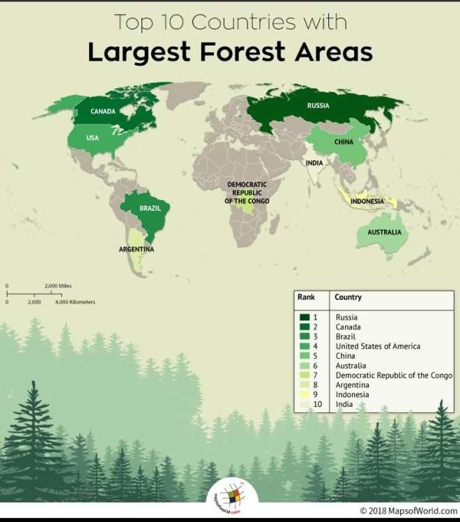 Top 10 countries with largest forest area
