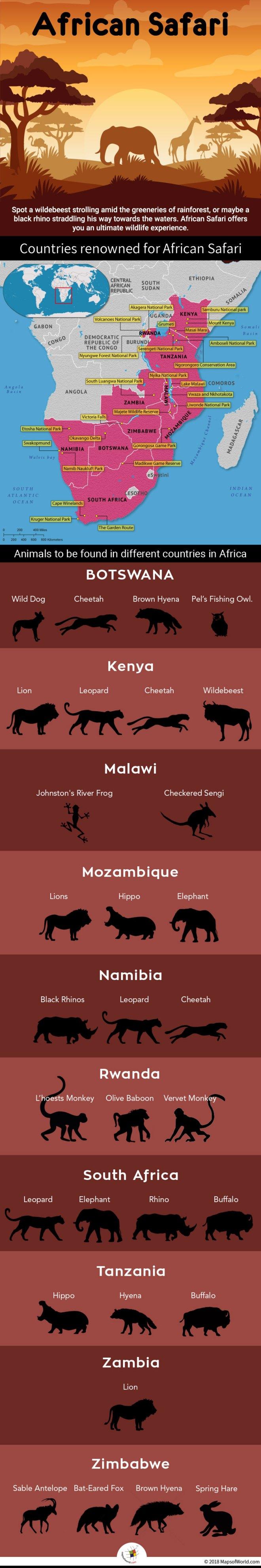 best destinations for African Safari
