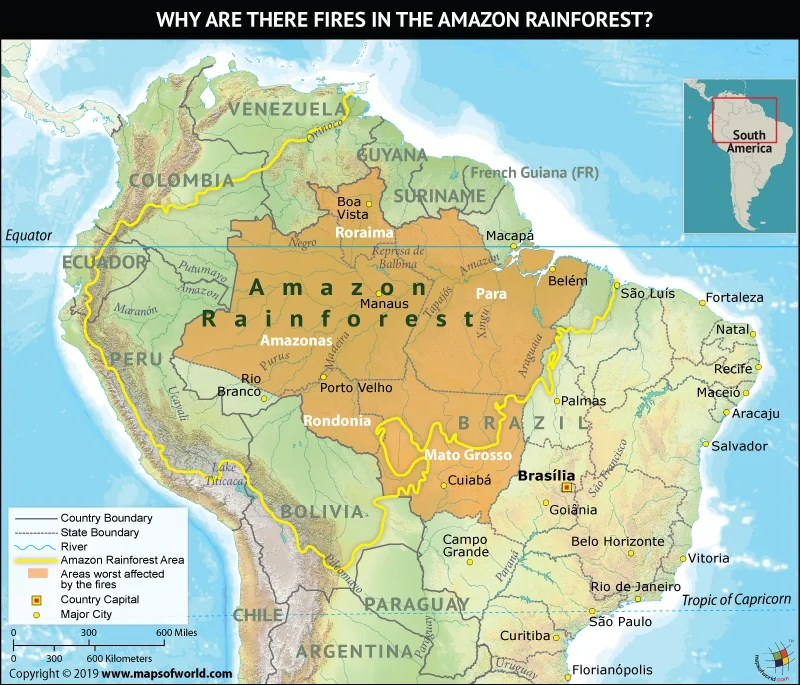 Map Amazon River Showing