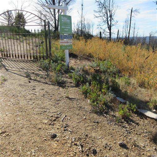 Photo of 4650 Cavedale Road, Napa, CA 95442 (MLS # 21905329)