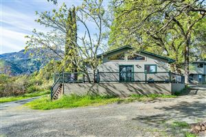 Photo of 4050 Lake County Highway, Calistoga, CA 94515 (MLS # 21907725)