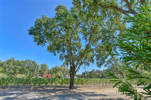 Tiny photo for 1080 Bale Lane, Calistoga, CA 94515 (MLS # 22019858)