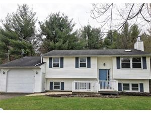 Photo of 320 HORSESHOE LANE, VESTAL, NY 13850 (MLS # 218409)