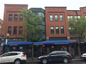 Photo of 133 Walton Street #110, Syracuse, NY 13202 (MLS # S1199651)