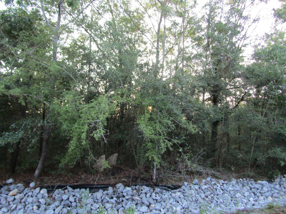 Photo of Lot 13 Hermitage Road, Defuniak Springs, FL 32433 (MLS # 847300)