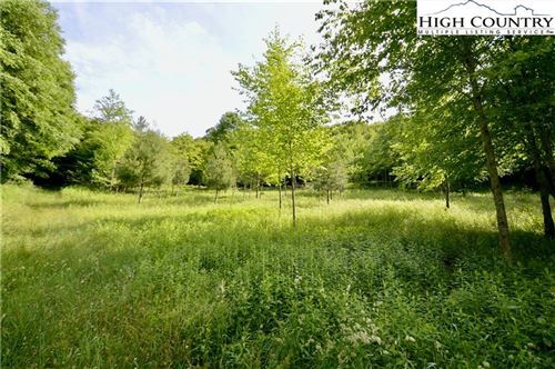 Tiny photo for TBD E Indrio (Tract B) Road, Blowing Rock, NC 28605 (MLS # 231097)