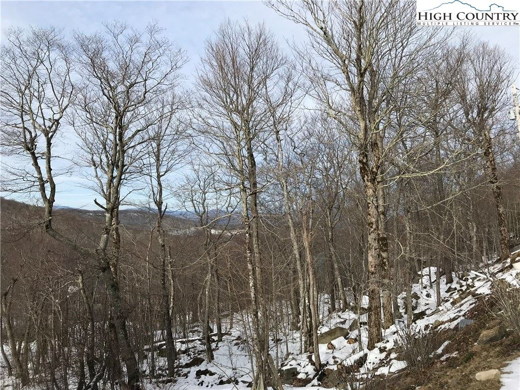 Photo for 107 W Shamrock Lane, Beech Mountain, NC 28604 (MLS # 220112)