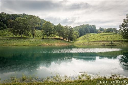 Photo of 2912 Mountain Dale Road, Vilas, NC 28692 (MLS # 201244)