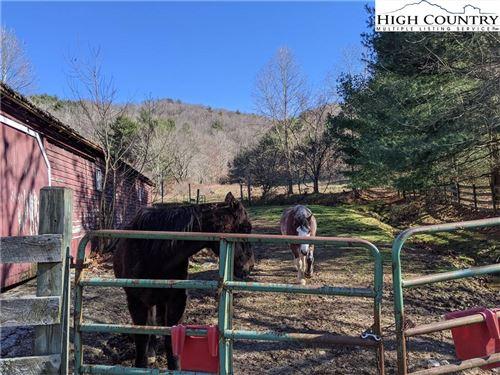 Tiny photo for 3758 Rush Branch Road, Sugar Grove, NC 28679 (MLS # 228300)
