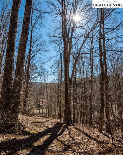 Tiny photo for T-8 & T-9 Jesse Brown Road, Boone, NC 28607 (MLS # 228328)