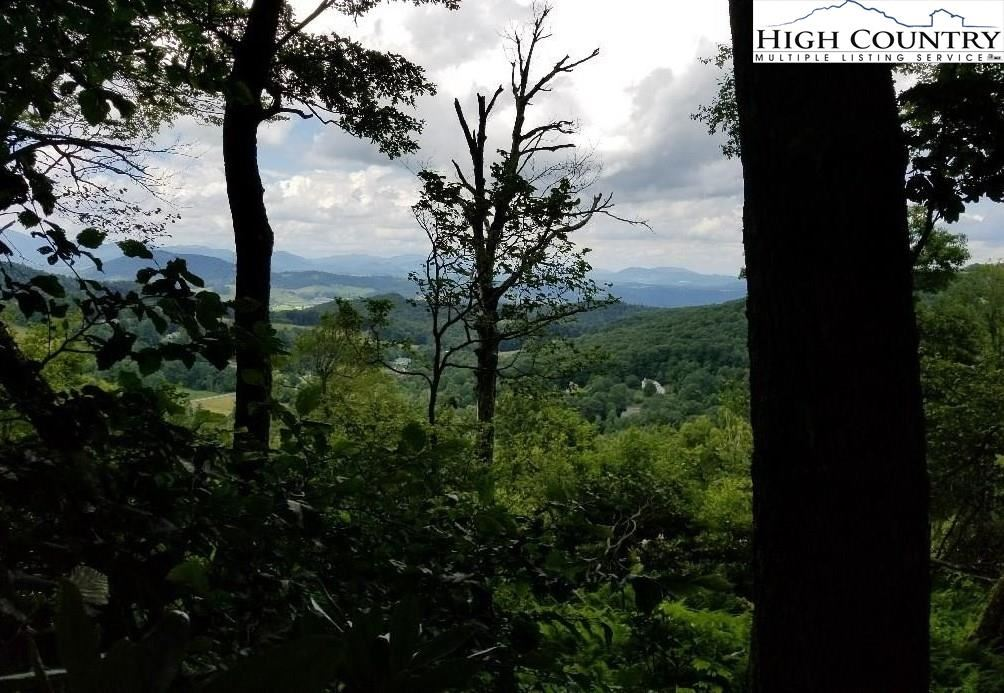 Photo for Lot 29 Antler Trail, Blowing Rock, NC 28605 (MLS # 229441)