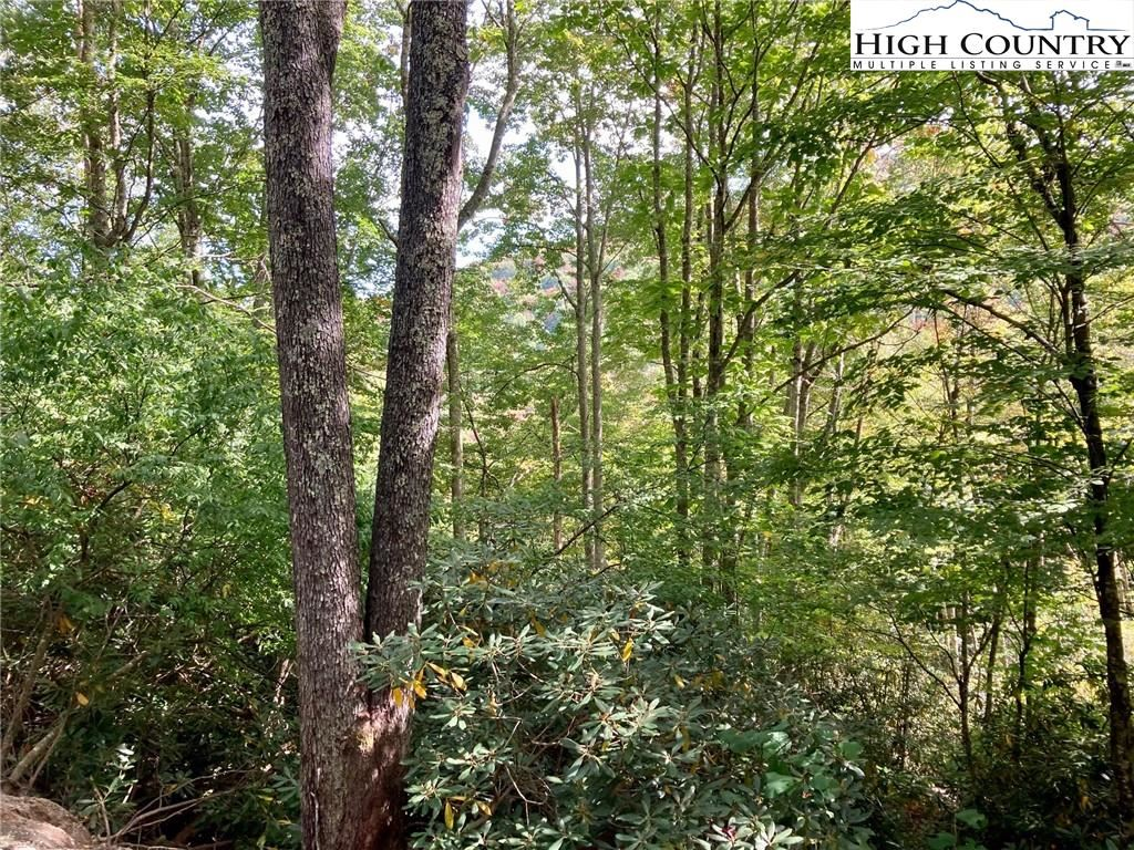 Photo for 104-106 Bluebird Lane, Beech Mountain, NC 28604 (MLS # 233525)