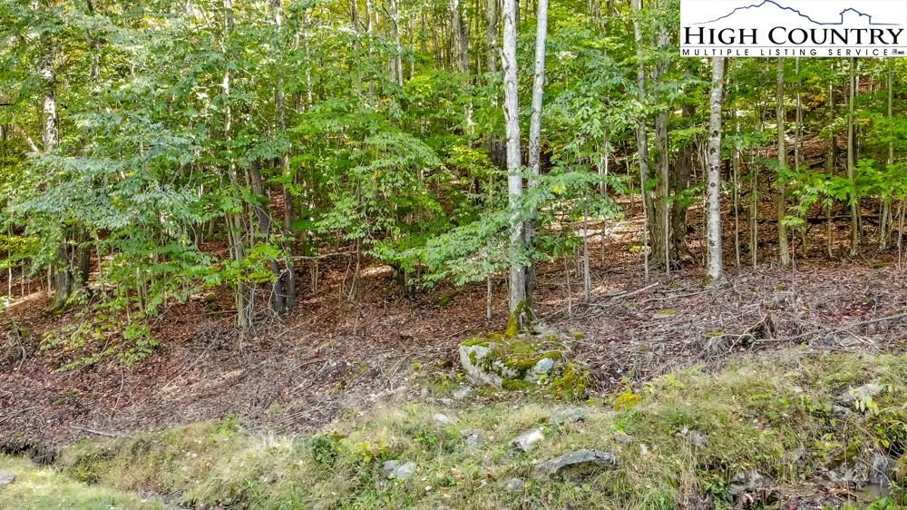 Photo for 132 Locust Ridge Road, Beech Mountain, NC 28604 (MLS # 233600)