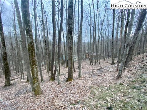 Photo of 116 S Hickory Lane, Beech Mountain, NC 28604 (MLS # 229626)