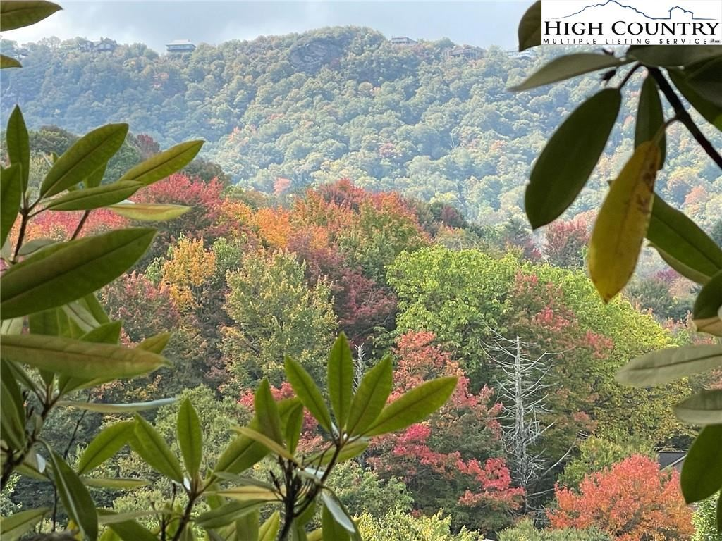Photo for 303 Overbrook Trail, Beech Mountain, NC 28604 (MLS # 233727)