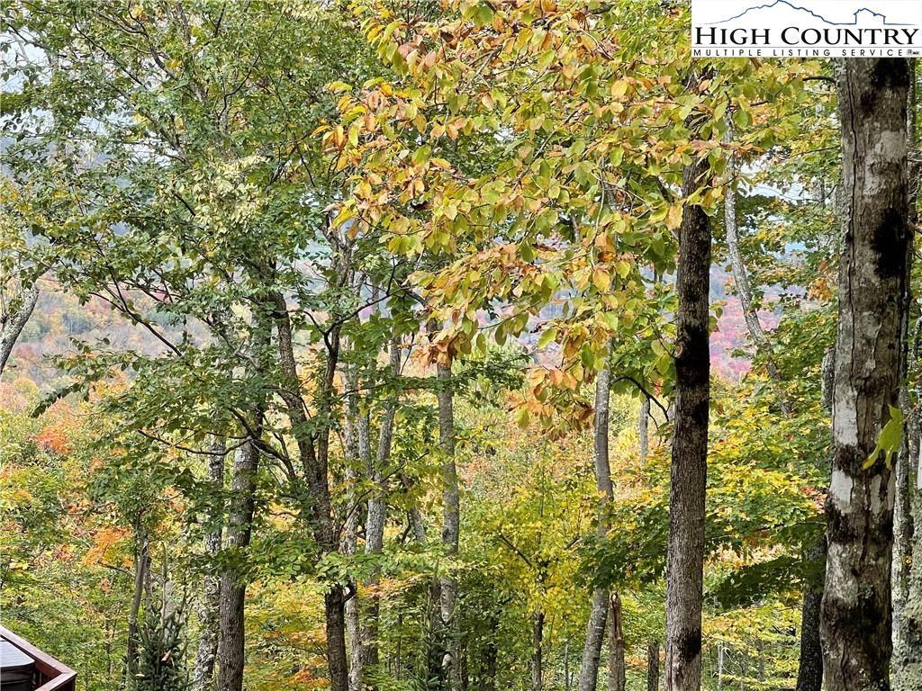 Photo for 115 S Upper Snowbird Trail, Beech Mountain, NC 28604 (MLS # 233731)