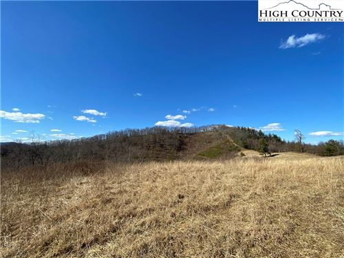 Tiny photo for TBD Darnell Woodie Road, Laurel Springs, NC 28644 (MLS # 228787)