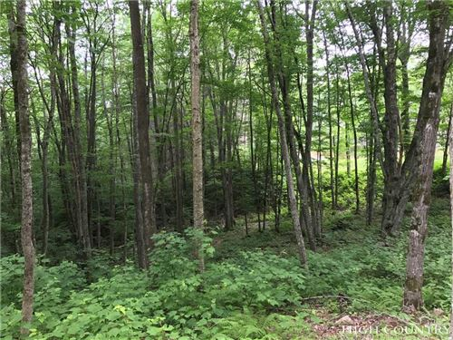 Photo of Lot 94 Eagles Nest Trail, Banner Elk, NC 28604 (MLS # 201810)