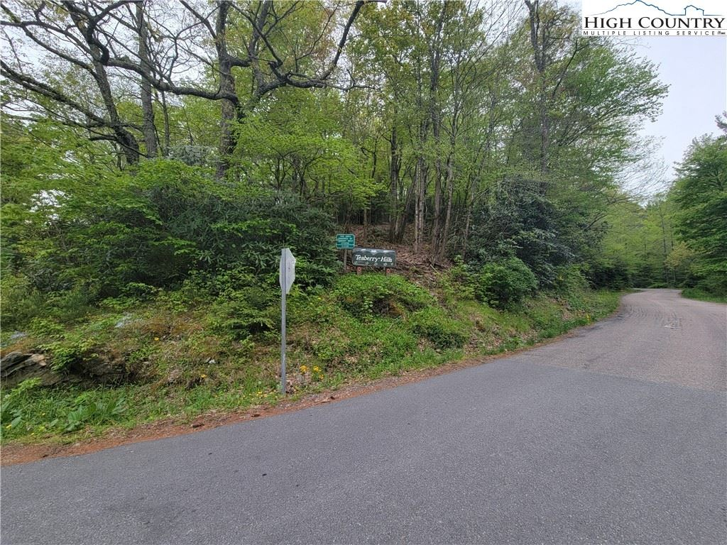 Photo for TBD Tracts #1 and #2 Teaberry Hills Road, Boone, NC 28607 (MLS # 230967)