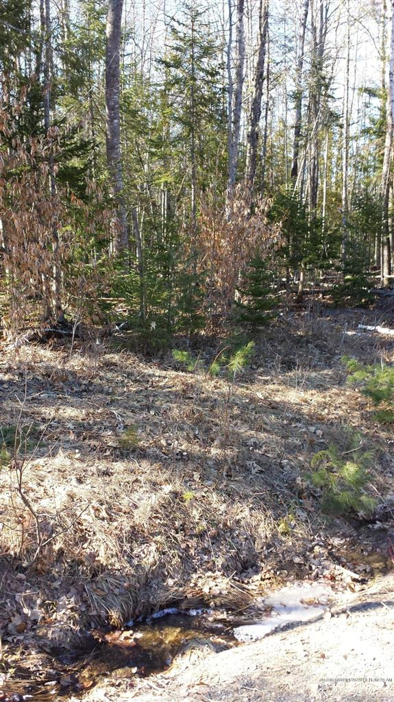 Photo for LOT 53 Cedar Breeze South, Glenburn, ME 04401 (MLS # 1410163)