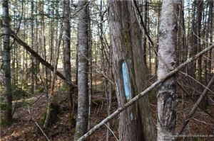Tiny photo for 902 Main ST, Mattawamkeag, ME 04459 (MLS # 1334184)